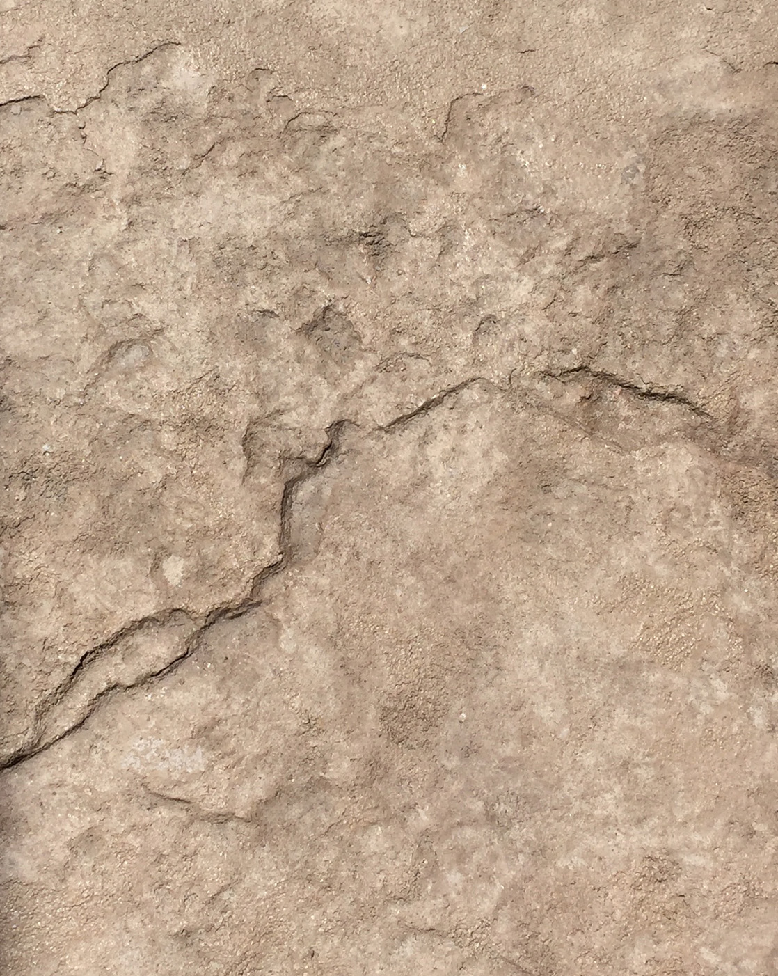 Heavy Texture Stamped Concrete